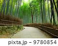京都 京都市 京都府の写真 9780854