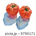 トマト_水彩 9790171