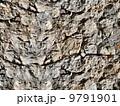 材料 素材 背景のイラスト 9791901