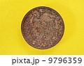アステカ帝国最後の皇帝クアウテモック 9796359