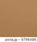 物質 マクロ 皮の写真 9796486
