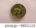 ペルー硬貨のリャマ 9801113
