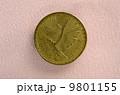 チリ硬貨のコンドル 9801155