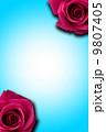 薔薇のフレーム 9807405