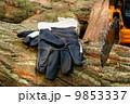たきぎ 焚き木 薪の写真 9853337