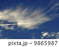 雲 飛行機雲 巻雲の写真 9865987