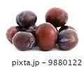 Plums 9880122