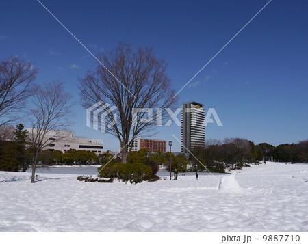 雪景色の多摩中央公園 9887710