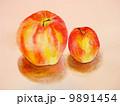 林檎 9891454
