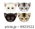 猫 動物 アメリカンショートヘアのイラスト 9923522