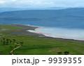 Peaceful view on the lake Nakuru 9939355