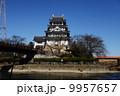 墨俣一夜城 墨俣城 一夜城の写真 9957657