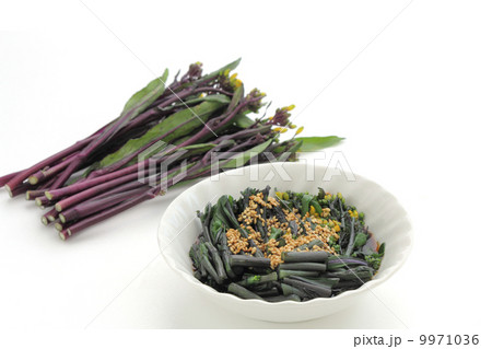 紅菜苔のごま和え 9971036