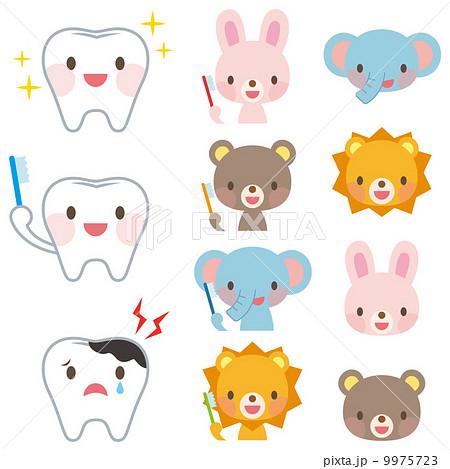 歯科 動物 虫歯
