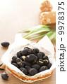 炒り豆 9978375