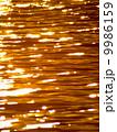 川面 反射 輝きの写真 9986159