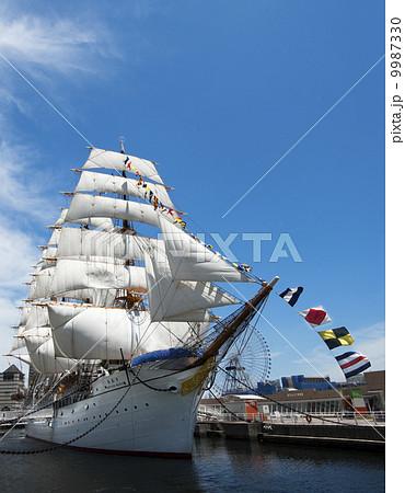 帆船日本丸の総帆展帆・満船飾 9987330