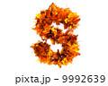 自然 秋 文字のイラスト 9992639