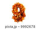 秋 自然 シーズンのイラスト 9992678