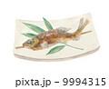塩焼き 鮎の塩焼き 鮎のイラスト 9994315