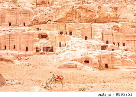 ペトラのロクリ(ヨルダン、ペトラ) 9995352
