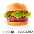 パン ブレッド 大の写真 10003862