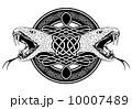抽象 コブラ 攻めのイラスト 10007489