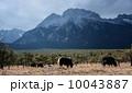 山脈 山岳 丘 10043887