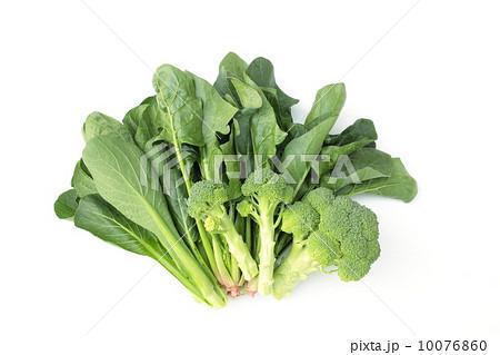 青野菜 10076860