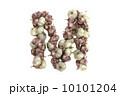 文字 にんにく ガーリックのイラスト 10101204