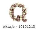 文字 にんにく ガーリックのイラスト 10101213