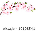Spring background of a blossoming tree branch with spring flower 10108541