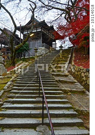 三井寺(園城寺)の観音堂へ向かう階段(滋賀県大津市園城寺町) 10114018