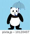 パンダ 傘 雨のイラスト 10120407