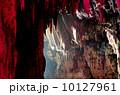 鍾乳洞 10127961
