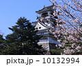 春の高知城 10132994