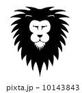LionsHead 10143843