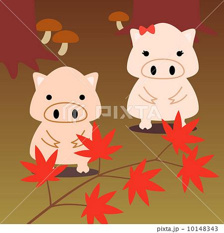カレンダー用イラスト素材 11月 豚 正方形のイラスト素材 10148343