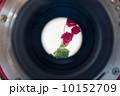 一眼レフ 薔薇 レンズの写真 10152709