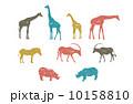動物セット 10158810