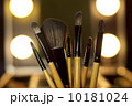Cosmetic Brushes 10181024