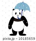 パンダ 傘 雨のイラスト 10185659