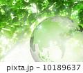 地球儀 地球 葉のイラスト 10189637