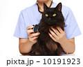 獣医 10191923