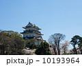 小田原城 天守閣 春の写真 10193964