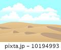 砂漠 10194993
