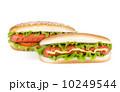 バーベキュー BBQ アメリカンの写真 10249544