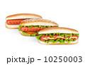 バーベキュー BBQ アメリカンの写真 10250003