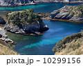 奥石廊崎 ヒリゾ浜 10299156