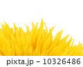 花 人工的 きれいの写真 10326486